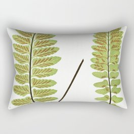 Asplenium Marinum (Sea Spleenwort) from Ferns British and Exotic (1856-1860) by Edward Joseph Lowe Rectangular Pillow