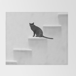 Black cat on steps Throw Blanket