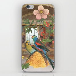 They had constructed their own garden from what they had iPhone Skin
