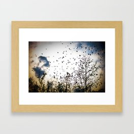 Birds Flying Through The Trees Framed Art Print