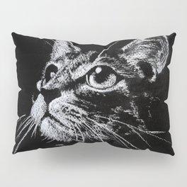 Cat Creta Pillow Sham