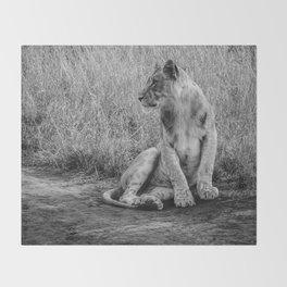 Pensive Lion Throw Blanket