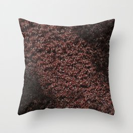 Autumn's red hedge Throw Pillow