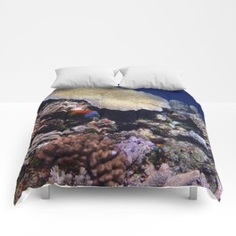 Fish on the Reef Comforters