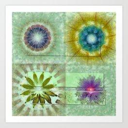 Scald Bared Flowers  ID:16165-022215-51851 Art Print