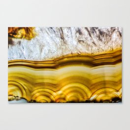 Amber Honey Agate Earth Canvas Print
