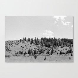 Holt Canvas Print