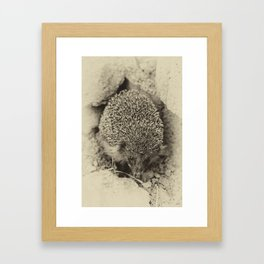 Cute visitor Framed Art Print