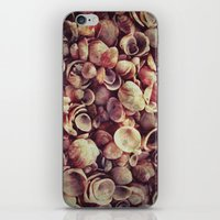 shells iPhone & iPod Skins featuring Shells by HooVeHee