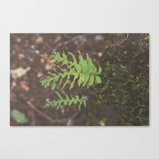 Hungry Hungry Caterpillar Forest Nature Print Canvas Print