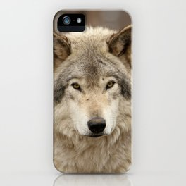 Autumn Timber Wolf iPhone Case