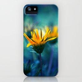 Little Sun iPhone Case
