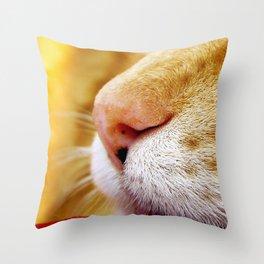 No Day Is So Bad It Can't Be Fixed With A Nap. Throw Pillow