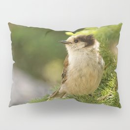 Profile of a Grey Jay / Whiskeyjack Pillow Sham