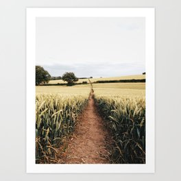 Wheat fields in derbyshire Art Print