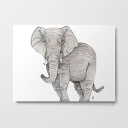 Eli the Elephant Metal Print