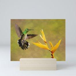 Green Hummingbird Watercolor Painting Mini Art Print