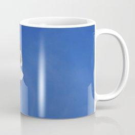 Seagull taking off Coffee Mug