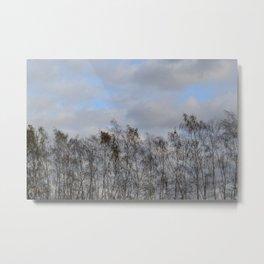 Serenity of the tree Metal Print