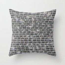 Ruined brick wall Throw Pillow