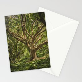 Tree Appreciation Stationery Cards