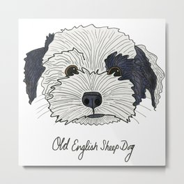 Old English Sheep Dog Metal Print