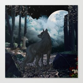 The lonely wolf in the dark night Canvas Print