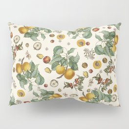 Apples Pears Peaches Pillow Sham