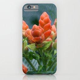 Hawaiian Sunset Ginger iPhone Case