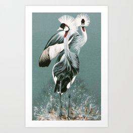Crowned Cranes Art Print