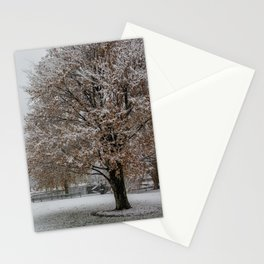 Public Garden snow Stationery Cards