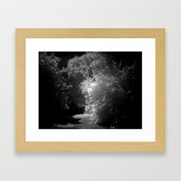 contrasts of nature Framed Art Print