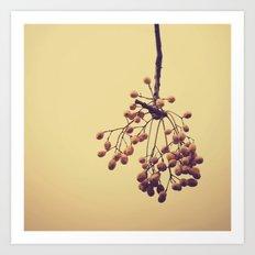 Autumn life (IV) Art Print