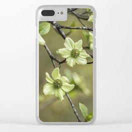 Green Kousa Dogwood Clear iPhone Case