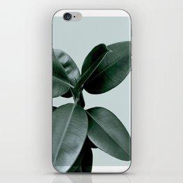 Decorum II iPhone Skin
