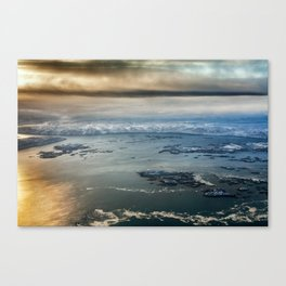 arctic flight Canvas Print