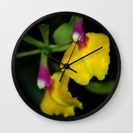 Epidendrum Orchid Wall Clock