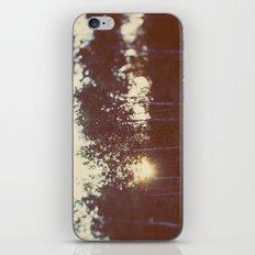 Silent Birch iPhone & iPod Skin