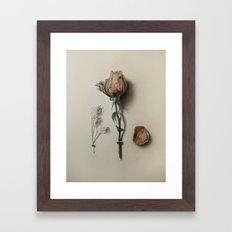 Dried Rose Framed Art Print