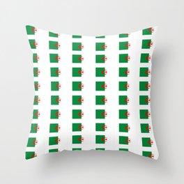 Flag of algeria 2 -algerian,algiers,camus,chaabi,oran,constantine,Annaba. Throw Pillow