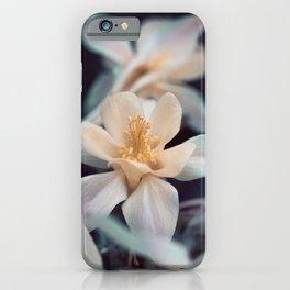 Fairytale Columbines iPhone Case