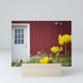 White Door on a Red Wall Mini Art Print