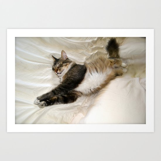 Cat Dreaming Art Print