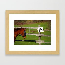 Looking at A Framed Art Print