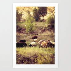Little Lamb, Who Made Thee Art Print