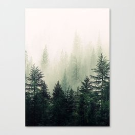 Foggy Pine Trees Canvas Print