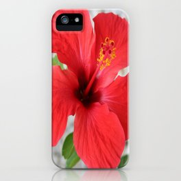 A Stunning Scarlet Hibiscus Tropical Flower iPhone Case