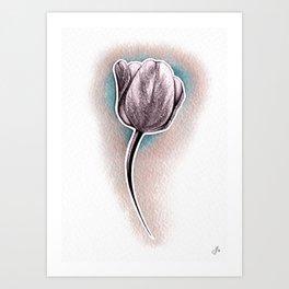 Monochrome tulip in a pink haze Art Print