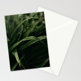 Rain on Grass Stationery Cards