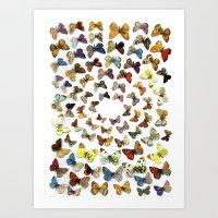 butterflies Art Prints featuring Butterflies by Ben Giles